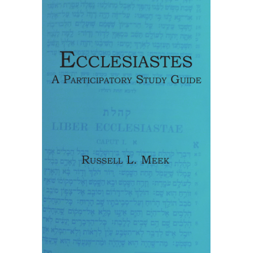 ecclesiastes analysis The word 'ecclesiastes' tells us about the author of this book this word means ' someone who gathers a group of people together' so, the author of this book was an official who had responsibility for other people he was leading his people as they searched for the truth about god there are various english translations of.